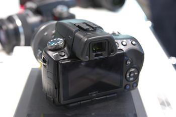 DSC09903.jpg